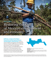Restoring the Gulf of Mexico's environment and economy