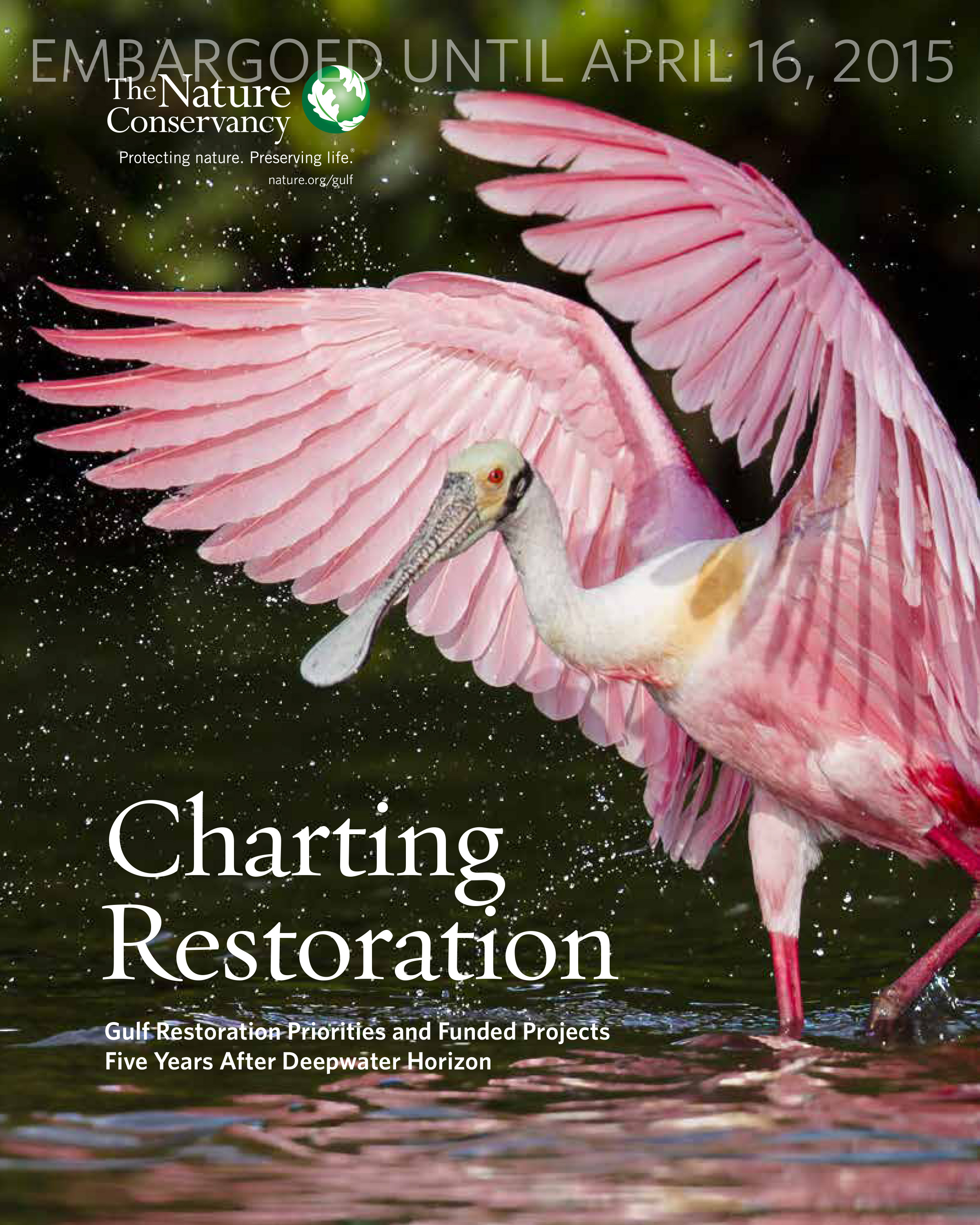 Charting Restoration 2015 Report Cover