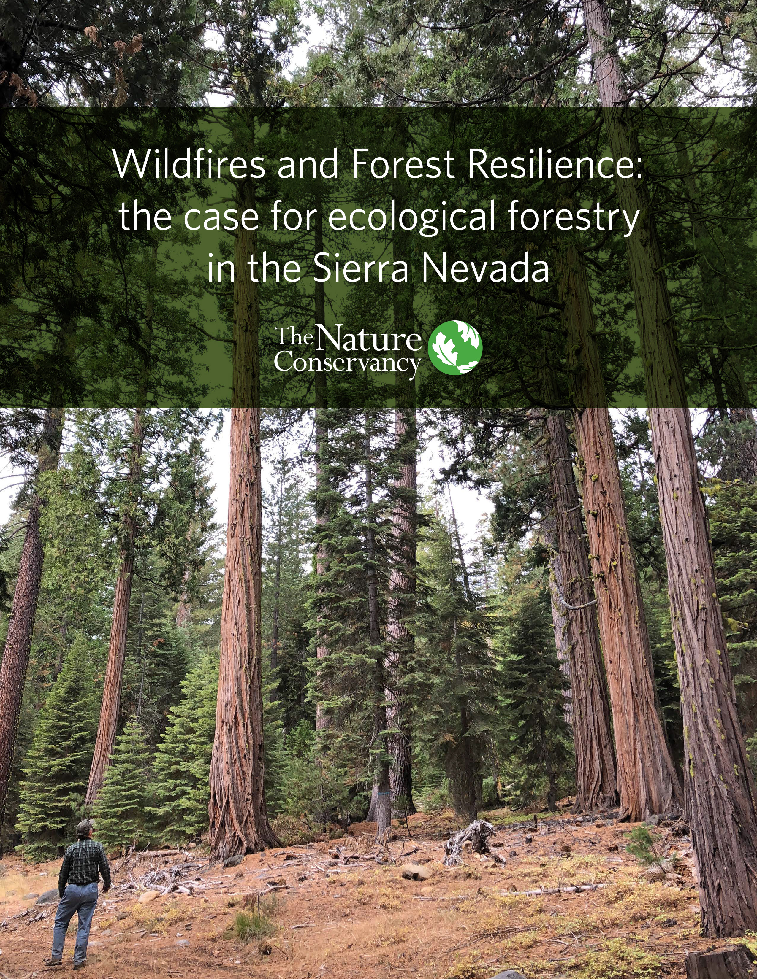The case for ecological forestry in the Sierra Nevada.