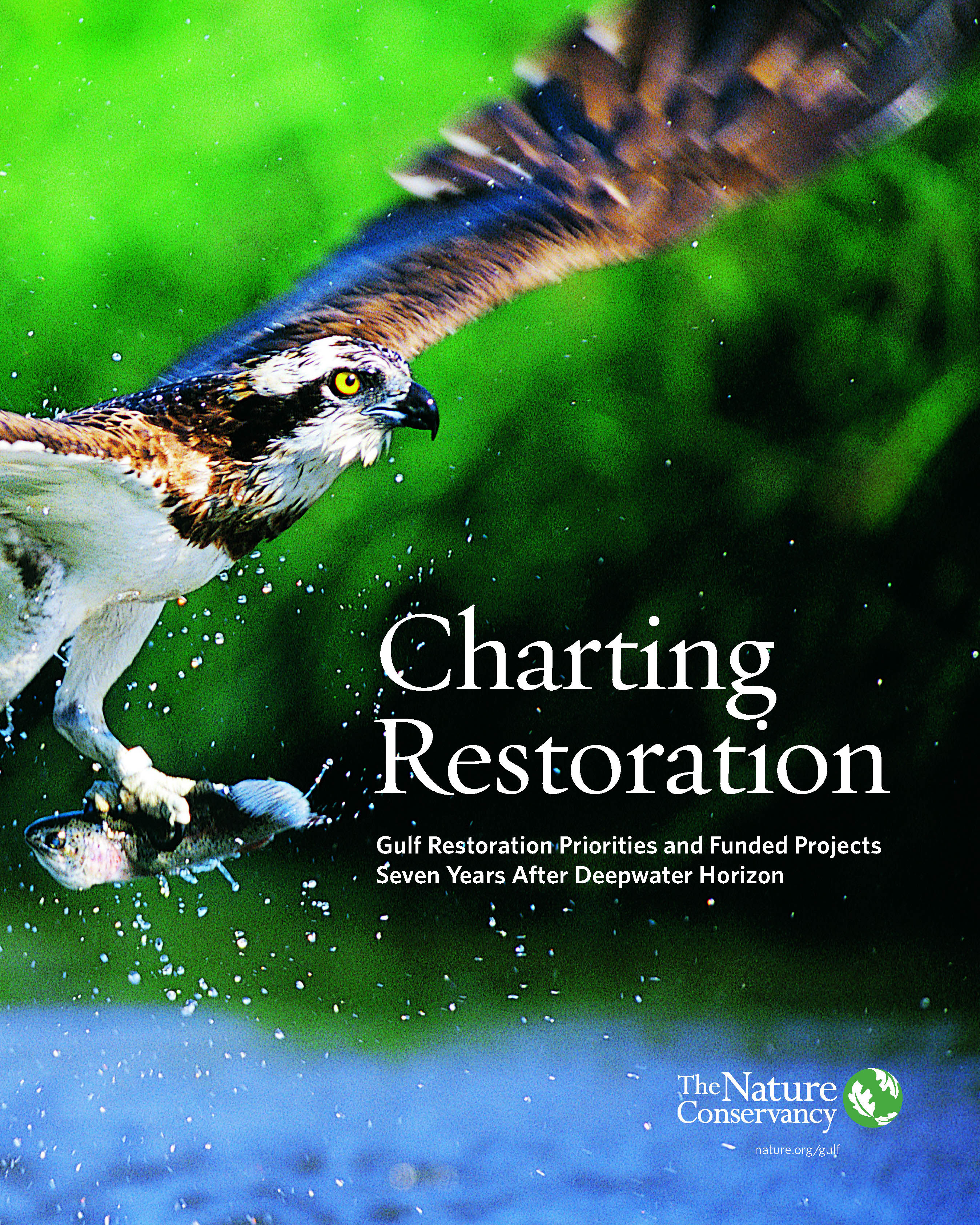 Charting Restoration 2017 Report Cover